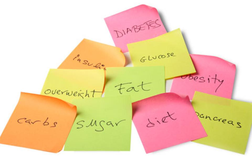 Group of sticky notes with one word on each: diabetes, insulin, glucose, overweight, fat, obesity, carbs, sugar, diet, pancreas