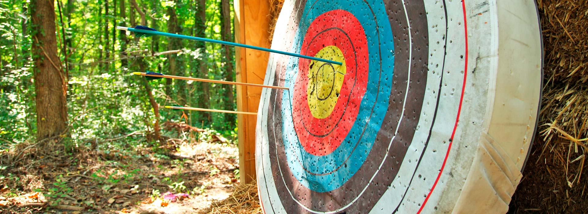 arrows on target from archery