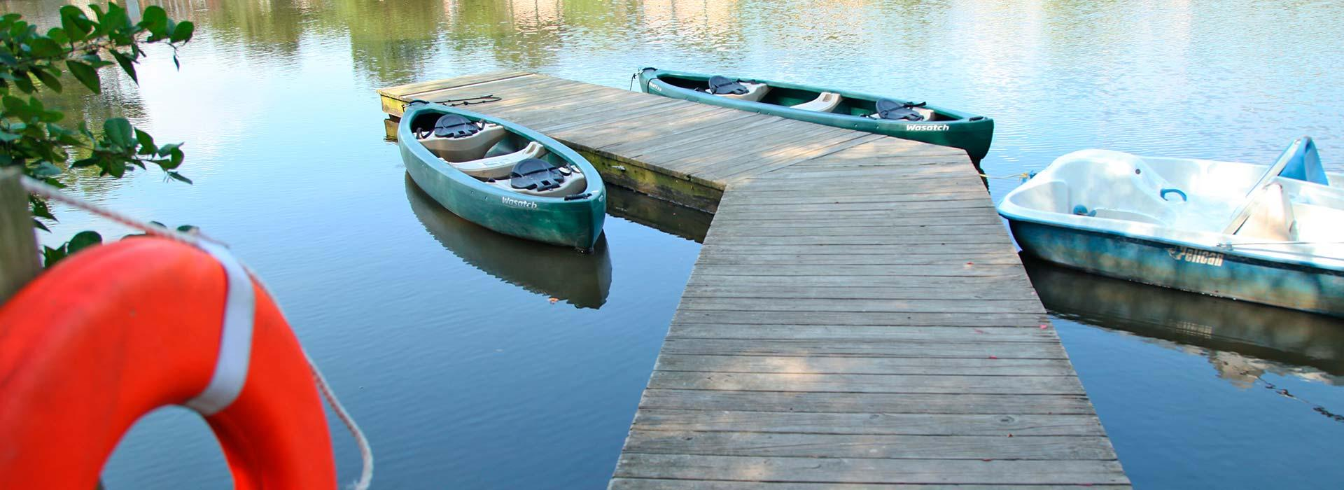 dock on the pond